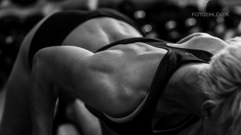 A Fitness vonalai